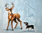 """Hello there Mister Deer"" - J. Austin Ryan - art & illustration by Marnie V."