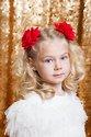 Josette Hairclip